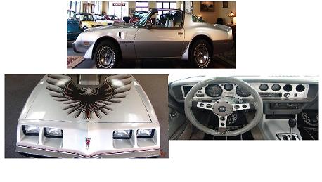 1979 - 1981 Firebird Trans Am