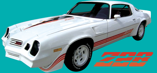 1980 1981 Camaro Z28 Decal Stripe Kit New!